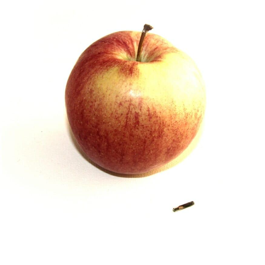 NFC implant next to apple